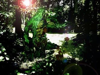 Swamp Thing-2