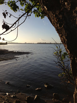 A view of Ford Island from the Waimalu walking trail.